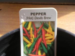 Very hot chillis