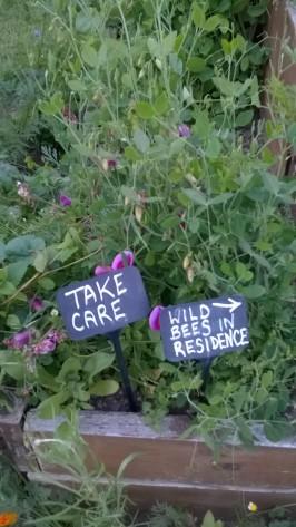 Wild bee sign, Royal Botanic Garden Edinburgh