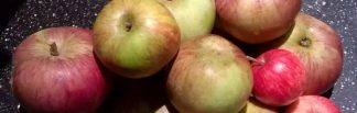 cropped-apples1-e1448311403694.jpg